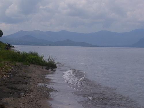 02_beautiful_lake_victoria_2