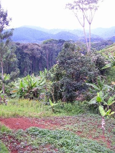 3_banda_villiage_kageno_rwanda_7